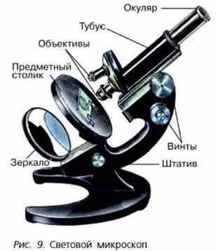 Какие увеличительные приборы используют современные ученые доклад 6206